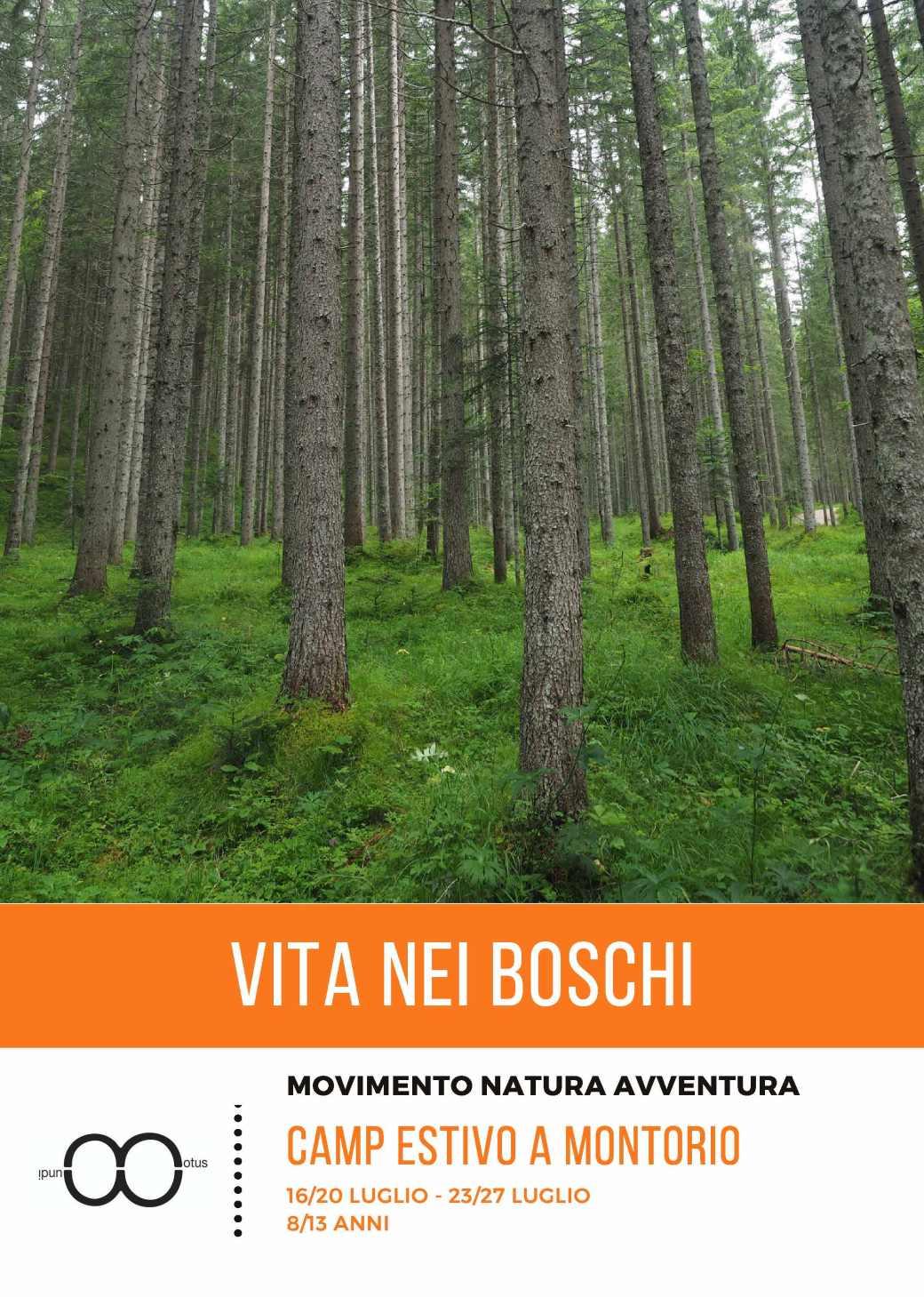 Vita nei boschi_Pagina_1